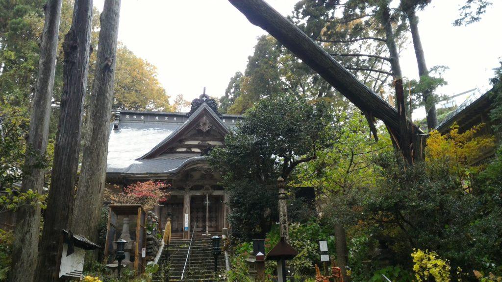 円覚寺の倒木